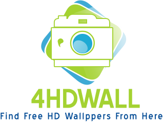 Free Download HD Wallpapers