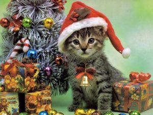 Christmas Wallpapers for mobile