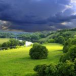 Nature Green HD Pictures